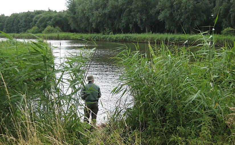 Fishing and bushcraft in the Flevopolder